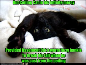 But Ceiling Cat in his infinite mercy         Provided Basement Cat a warm fuzzy bankie To break his fall when he  was cast from the ceiling