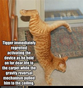Tigger immediately regretted activating the device as he held on for dear life to the carpet while the gravity reversal mechanism pulled him to the ceiling.