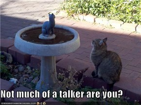 Not much of a talker are you?