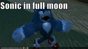 Sonic in full moon