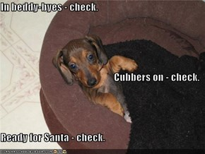 In beddy-byes - check. Cubbers on - check. Ready for Santa - check.