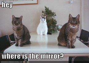 hey   where is the mirror?