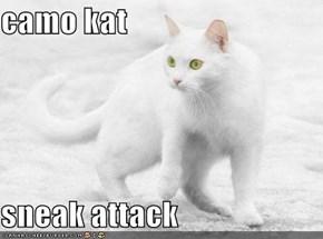camo kat  sneak attack