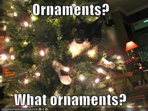 Ornaments?  What ornaments?