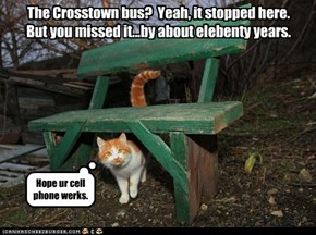 The Crosstown bus?  Yeah, it stopped here.  But you missed it...by about elebenty years.