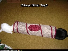 Chinese Kitteh Trap?