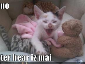 no  ter bear iz mai