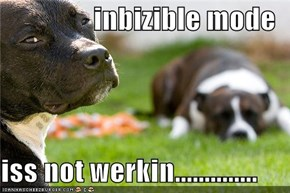 inbizible mode  iss not werkin..............