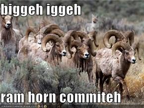 biggeh iggeh  ram horn commiteh