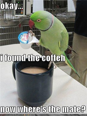 okay... i found the coffeh now where's the mate?