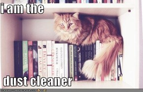 i am the   dust cleaner