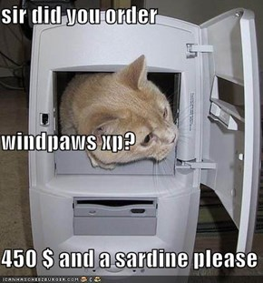 sir did you order windpaws xp? 450 $ and a sardine please