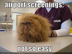 airport screenings:  not so easy