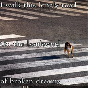 I walk this lonely road On the boulevard of broken dreams