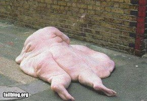 big....fat...FAIL!