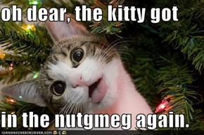 oh dear, the kitty got  in the nutgmeg again.