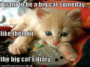 i want to be a big cat someday... like them in the big cat's diary