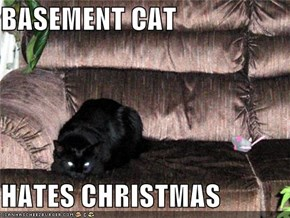 BASEMENT CAT   HATES CHRISTMAS