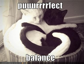puuurrrrfect  balance