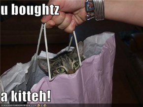 u boughtz  a kitteh!
