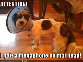 ATTENTION!  I gotz a megaphone on mai head!