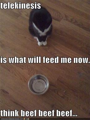 telekinesis is what will feed me now. think beef beef beef...