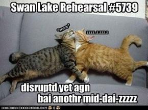 Swan Lake Rehearsal #5739