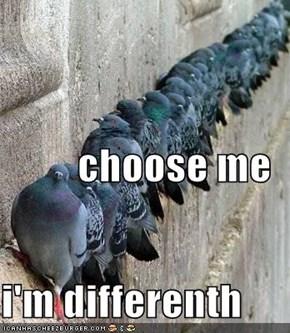 choose me i'm differenth