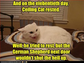 And on the elebentieth day, Ceiling Cat rested.