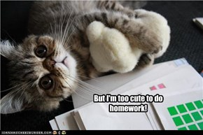 But I'm too cute to do homework!