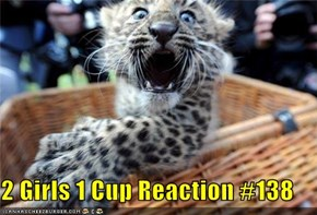 2 Girls 1 Cup Reaction #138