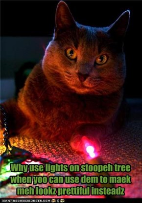 Why use lights on stoopeh tree when yoo can use dem to maek meh lookz prettiful insteadz