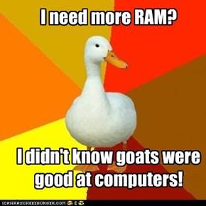 I need more RAM?