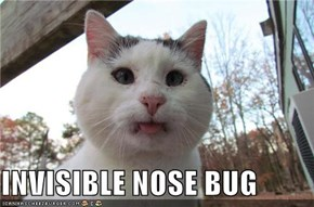 INVISIBLE NOSE BUG