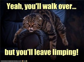 Yeah, you'll walk over...     but you'll leave limping!