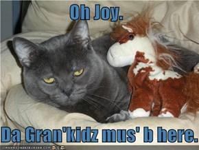 Oh Joy.  Da Gran'kidz mus' b here.