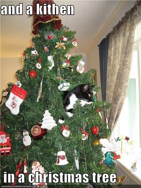 and a kithen   in a christmas tree
