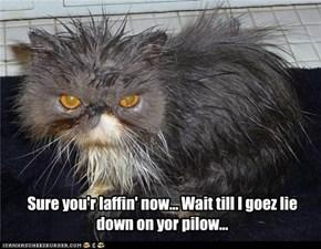 Sure you'r laffin' now... Wait till I goez lie down on yor pilow...