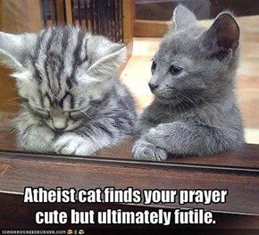 Dunt Be Sew Smug, Atheist Cat!