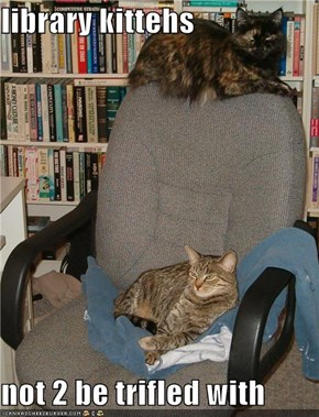 library kittehs  not 2 be trifled with