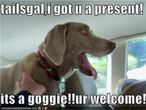 tailsgal,i got u a present!  its a goggie!!ur welcome!