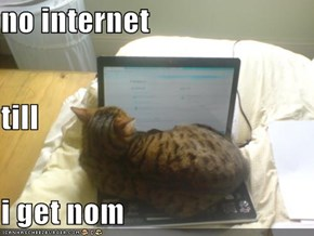 no internet till i get nom