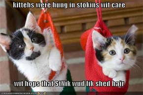 kittehs were hung in stokins wit care  wit hops that StNik wud lik shed hair
