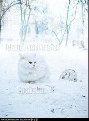 camoflage master