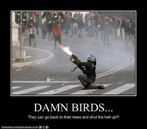 DAMN BIRDS...