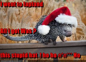 I went to lapland         All i got Was ? this stupid hat  ! ho ho #'#*** Ho