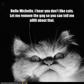 Hello Michelle. I hear you don't like cats.  Let me remove the gag so you can tell me alllll about that.