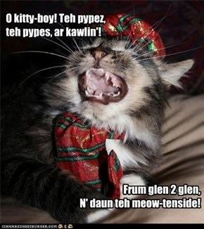 O kitty-boy! Teh pypez, teh pypes, ar kawlin'!