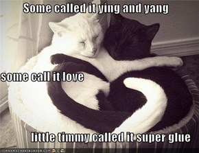 Some called it ying and yang some call it love little timmy called it super glue