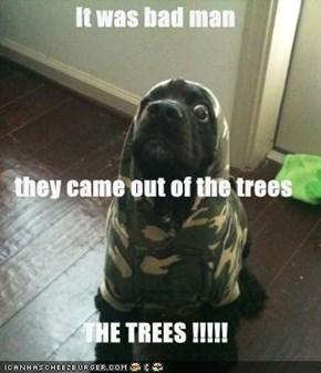 It was bad man  they came out of the trees  THE TREES !!!!!